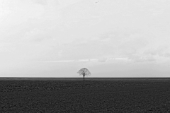 eenzaam in Groningerland